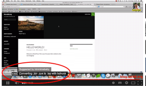 Featured video option